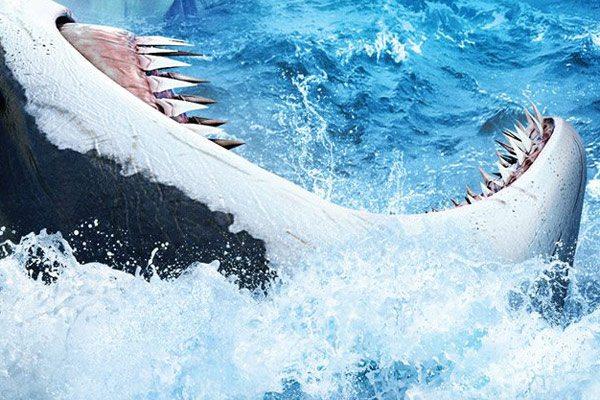 shark-48-meters-down